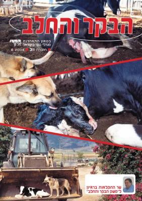 חוברת 311, אוגוסט 2004