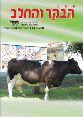 חוברת 331, דצמבר 2007