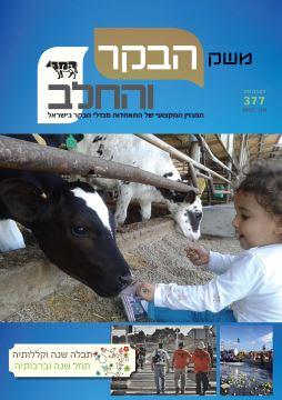 חוברת 377