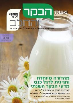 חוברת 378