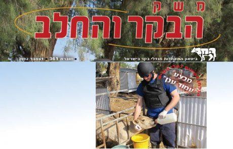חוברת 361, דצמבר 2012