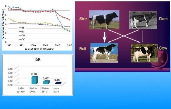 התקדמות גנטית בבקר לחלב בעידן הסלקציה הגנומית