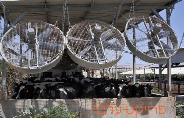 פרויקט ערבה – שיפור משמעותי ברווחיות הרפתות